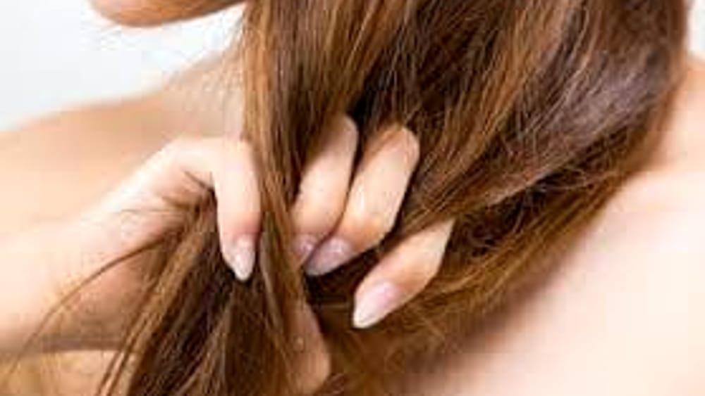 I consigli e i rimedi naturali per dare nuova vita ai capelli secchi e sfibrati